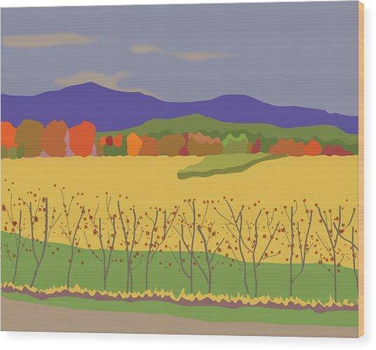 Plymouth Landscape Wood Print by Marian Federspiel
