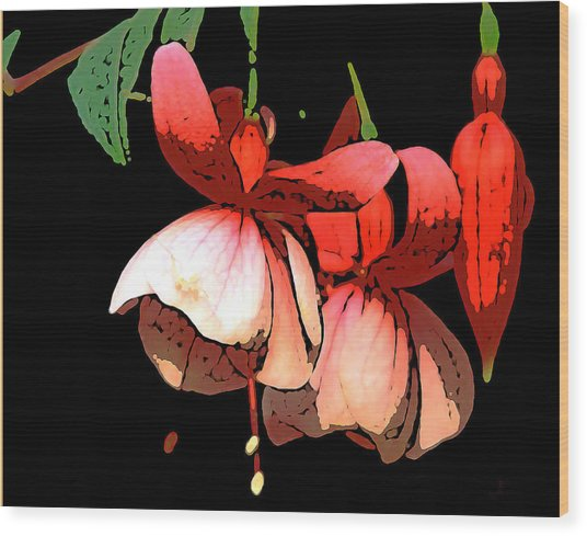 Pod Flower B Wood Print