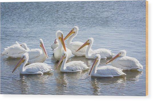 Pod Of Pelicans I Wood Print