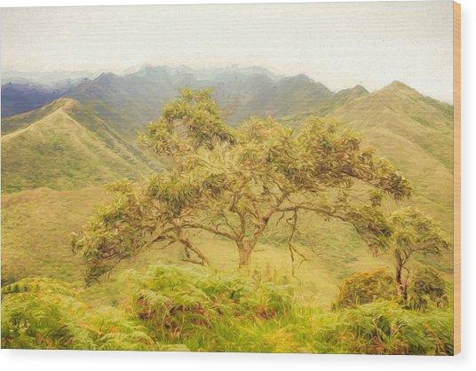 Podocarpus Tree Wood Print