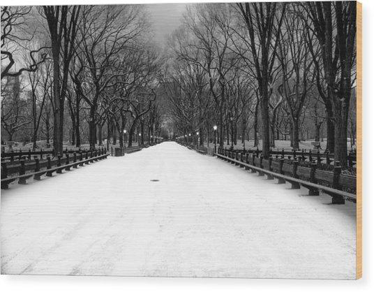 Poet's Walk In Snow Wood Print