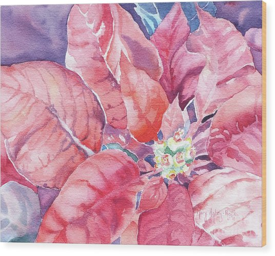 Poinsettia Glory Wood Print