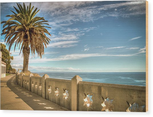 Point Fermin Walkway San Pedro California Wood Print