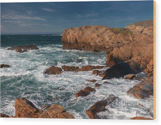 Point Lobos 1 Wood Print