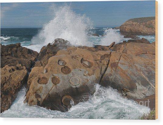 Point Lobos' Concretions Wood Print