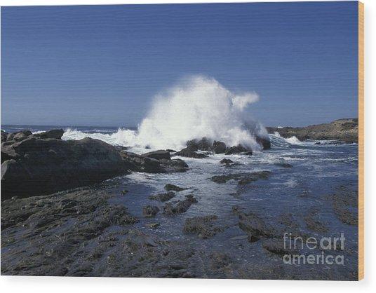 Point Lobos Seascape 2 Wood Print