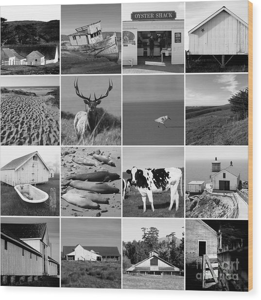 Point Reyes National Seashore 20150102 Bw Wood Print