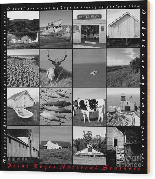 Point Reyes National Seashore 20150102 With Text Bw Wood Print
