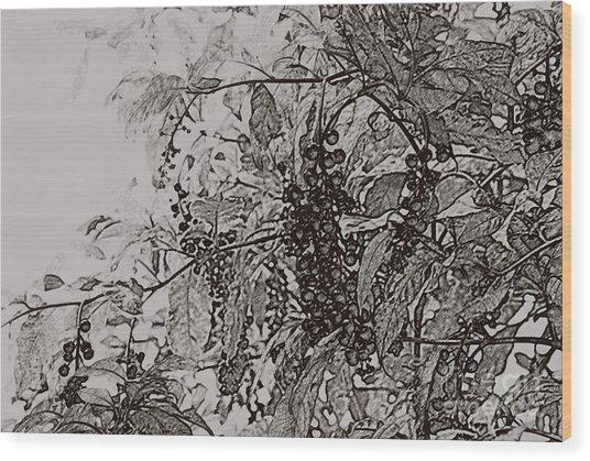 Pokeweed Wood Print