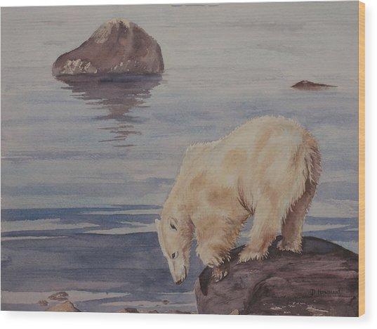Polar Bear Fishing Wood Print by Debbie Homewood