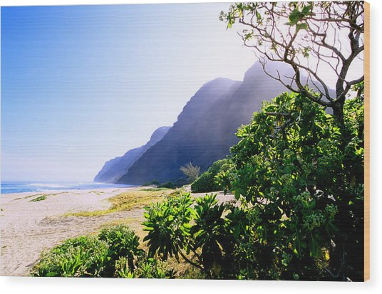 Polihale Morning Wood Print by Kevin Smith