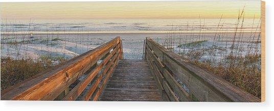 Ponce De Leon Inlet Beach Path Wood Print