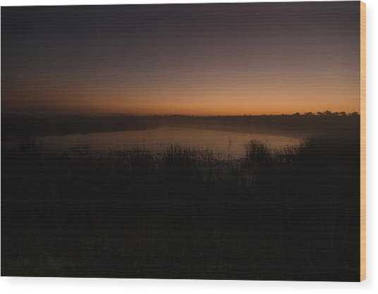 Pond And Cattails At Sunrise Wood Print