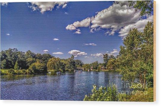 Pond At Verona Park Wood Print