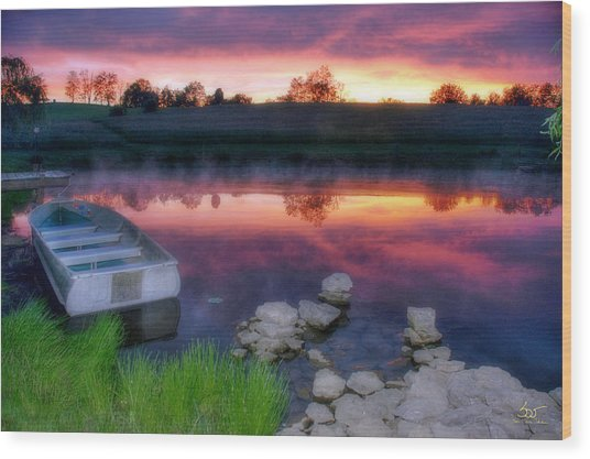 Pond Dreams 9 Wood Print
