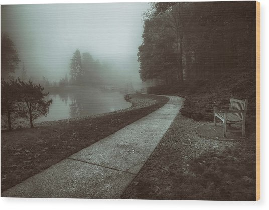 Pond Walk In Black And White Wood Print
