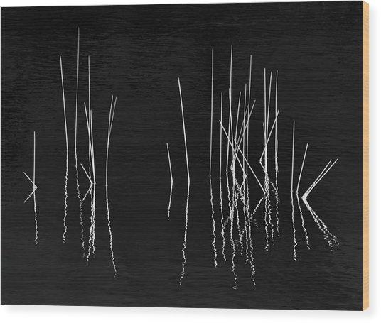 Pond Zen Wood Print