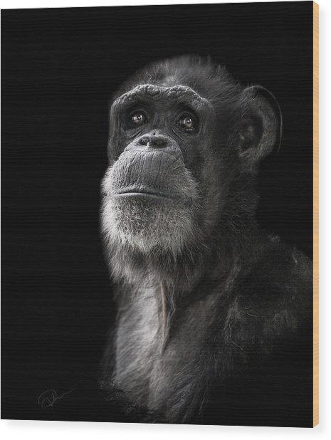 Ponder Wood Print