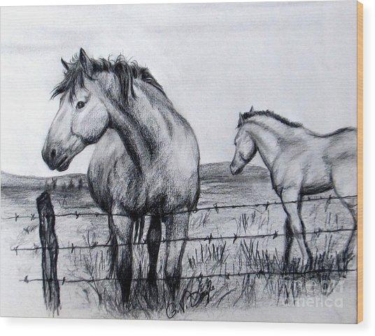 Ponder Texas Horses Wood Print