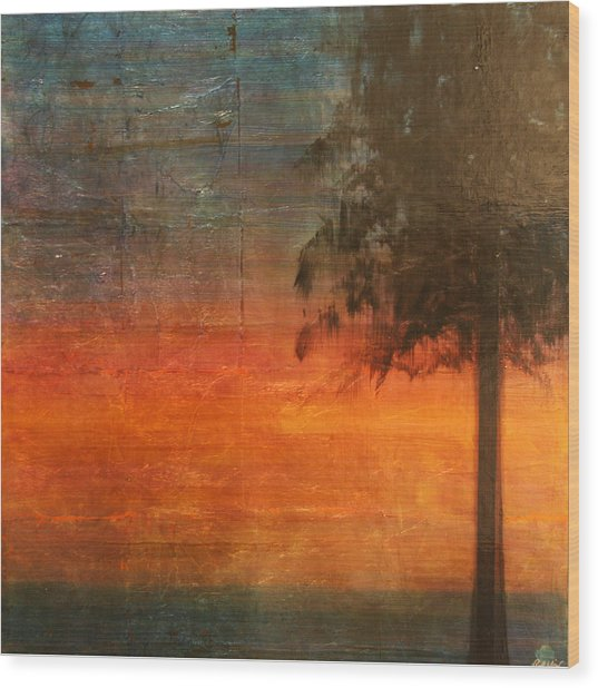 Ponderosa Pine Wood Print by Patt Nicol