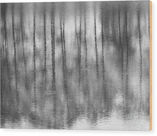 Pondpoland Wood Print