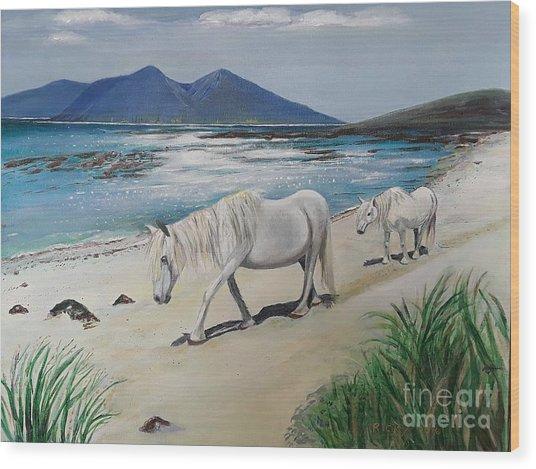 Ponies Of Muck- Painting Wood Print