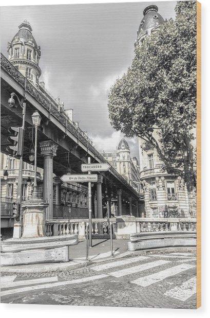 Pont De Bir-hakeim, Paris, France Wood Print