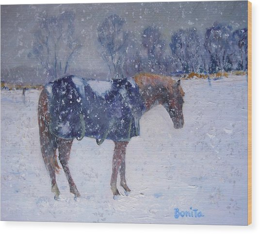 Pony In The Snow Wood Print