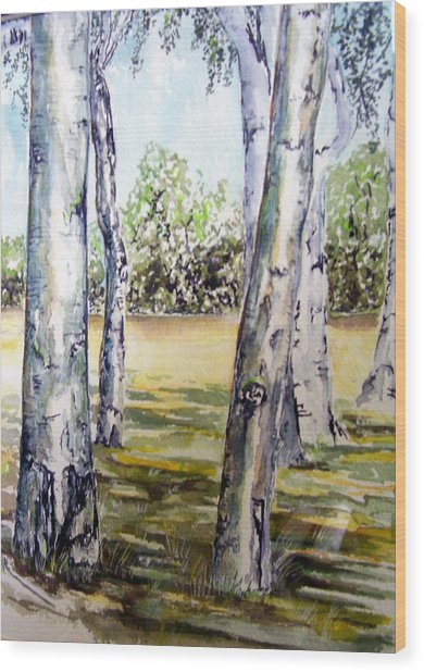 Poplar Tree   Wood Print by Paul Sandilands