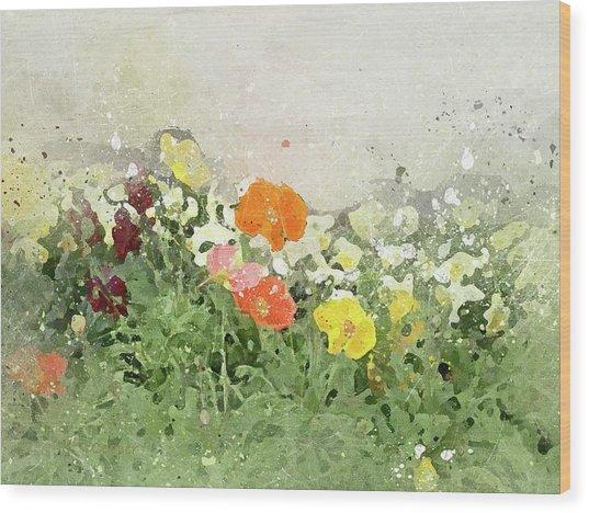 Poppies-2-c Wood Print
