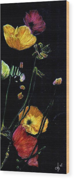 Poppies 2 Wood Print