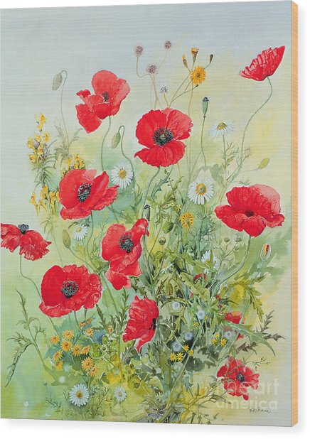 Poppies And Mayweed Wood Print