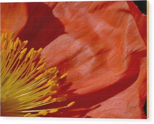 Poppy Love Wood Print by S Lynn Lehman