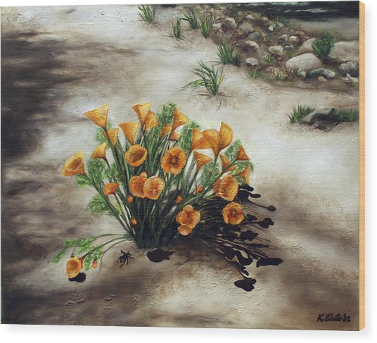 Poppy Oasis Wood Print by Kathy Shute
