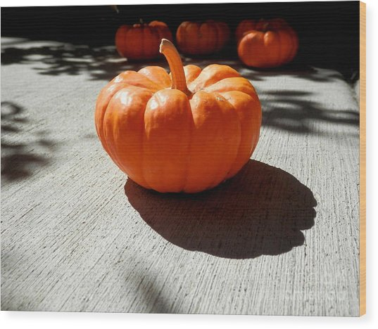 Poppy Pumpkin Wood Print