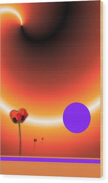 Poppy Sunset Wood Print by Tina Hariu