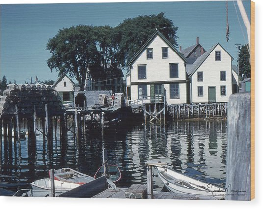Port Clyde Maine Wood Print