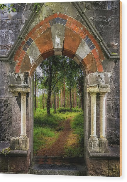 Wood Print featuring the photograph Portal To Portumna Forest by James Truett