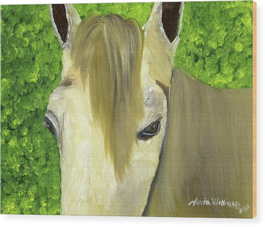 Portrait Of A Curious Horse Wood Print by Maria Williams