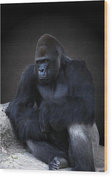 Portrait Of A Male Gorilla Wood Print