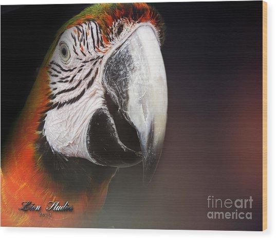 Portrait Of A Parrot Wood Print