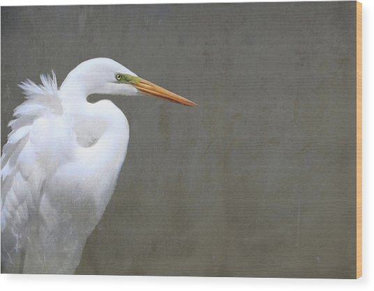 Portrait Of An Egret Rectangle Wood Print
