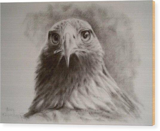 Portrait Of Eagle Wood Print by Anna Franceova
