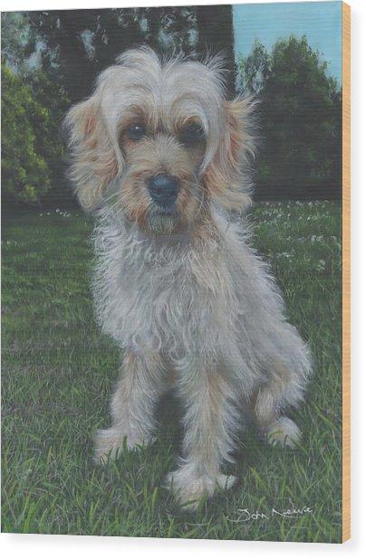 Portrait Of Toffee Wood Print