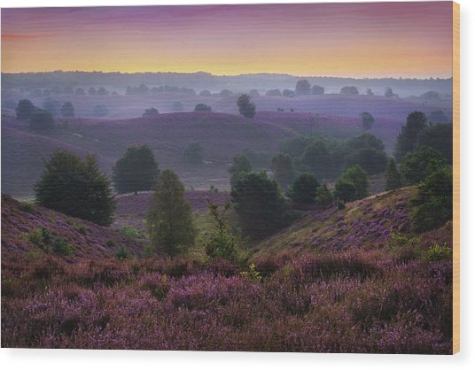 Posbank Sunrise Wood Print