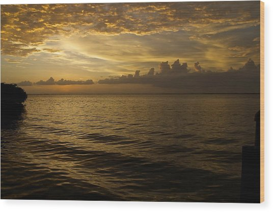 Post Sunset Bliss Wood Print by Christin Walton