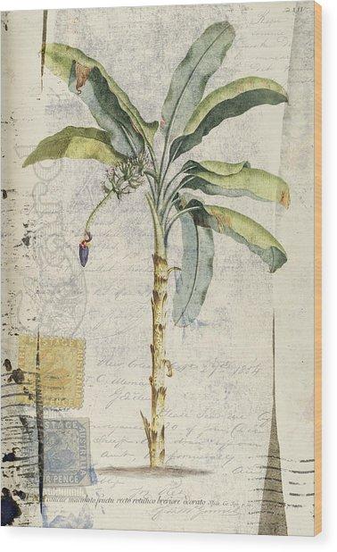 Postcard Banana Plant Botanical Wood Print