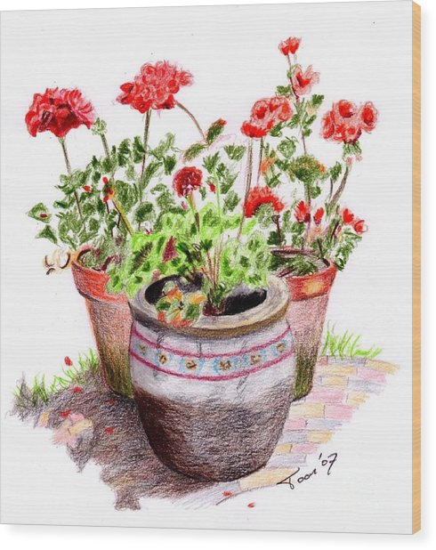 Pots Of Spring Wood Print