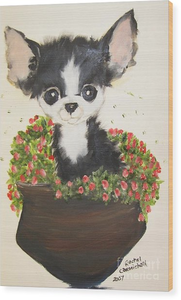 Potted Pup Wood Print