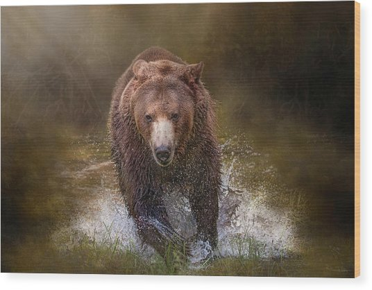 Power Of The Grizzly Wood Print
